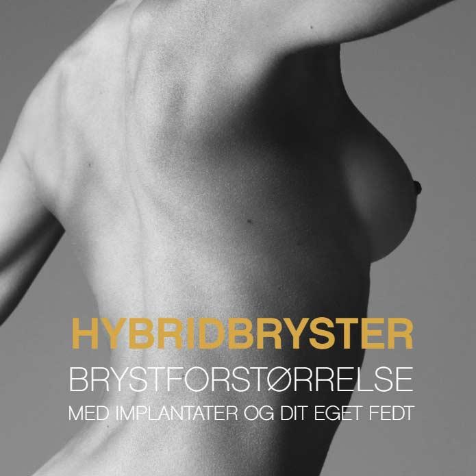 hybridbryster
